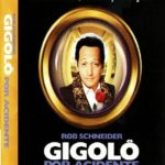Gigolô Por Acidente Torrent Bluray 720p Dublado (1999) Download
