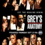 Grey's Anatomy 12° Temporada – Torrent (2015) HDTV | 720p Dublado – Legendado Download