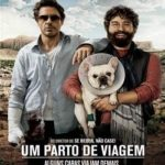 Um Parto de Viagem Torrent – BluRay Rip 1080p Dublado (2010) Download