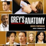 Grey's Anatomy 5ª Temporada – HDTV Dublado Torrent Download (2009) Atualizado