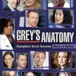 Grey's Anatomy 6ª Temporada – HDTV Dublado Torrent Download (2010) Atualizado