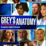 Grey's Anatomy 8ª Temporada – HDTV Dublado Torrent Download (2012)