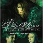 João, Maria e a Bruxa Da Floresta Negra – Torrent – Dublado BluRay 720p (2013)