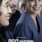 Grey's Anatomy 10ª Temporada HDTV 720p Dual Áudio Torrent Download (2014)