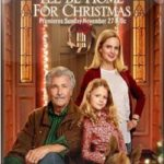 Estarei em casa para o Natal (2017) Dual Áudio WEBRip 720p | 1080p – Torrent Download