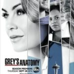 Grey's Anatomy 14ª Temporada Completa Torrent (2017) Dublado / Legendado WEB-DL 720p – Download