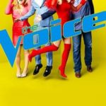 The Voice 17ª Temporada Torrent (2019) Legendado WEB-DL 720p | 1080p – Download