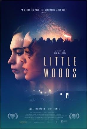 Baixar Torrent Little Woods Torrent (2019) Legendado WEB-DL 720p | 1080p – Download Download Grátis