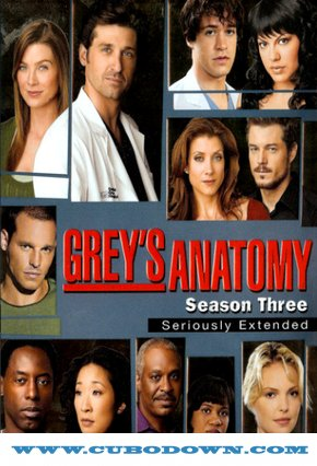 Baixar Torrent Grey's Anatomy 3ª Temporada – HDTV Dublado Torrent Download (2007) Download Grátis