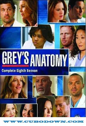 Baixar Torrent Grey's Anatomy 8ª Temporada – HDTV Dublado Torrent Download (2012) Download Grátis