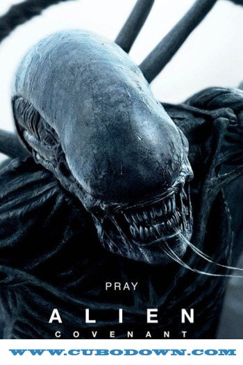 Baixar Torrent Alien: Covenant 2017 BluRay 720p e 1080p 5.1 Dublado / Dual Áudio Torrent Download Download Grátis