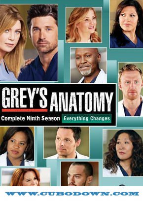 Baixar Torrent Grey's Anatomy 9ª Temporada (2013) WEB-DL 720p Dual Áudio Torrent Download Download Grátis