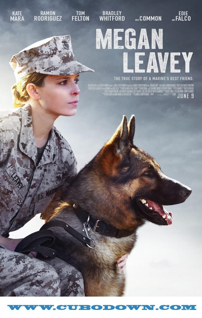 Baixar Torrent Megan Leavey Torrent (2018) Dual Áudio / Dublado BluRay 720p | 1080p – Download Download Grátis