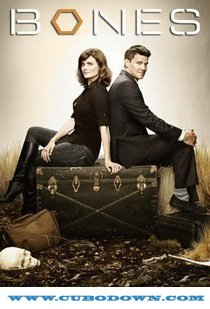 Baixar Torrent Bones 8ª Temporada Completa (2012) DUBLADO HDTV 720p – Torrent Download Download Grátis