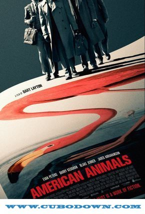 Baixar Torrent American Animals Torrent (2018) Legendado 5.1 BluRay 720p | 1080p – Download Download Grátis