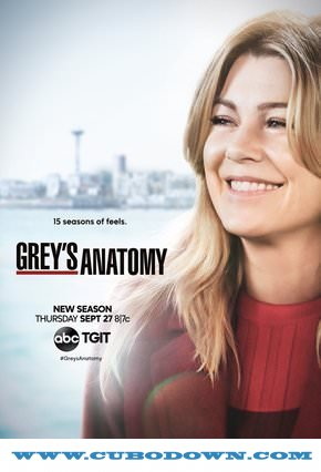 Baixar Torrent Grey's Anatomy 15ª Temporada Torrent (2018) Dual Áudio / Legendado HDTV 720p | 1080p – Download Download Grátis