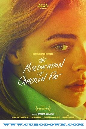 Baixar Torrent O Mau Exemplo de Cameron Post Torrent (2019) Legendado 5.1 BluRay 720p | 1080p | REMUX – Download Download Grátis